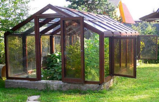 Теплицы-оранжереи и зимние теплицы в саду