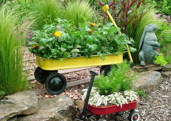 Контейнерный сад: всем по карману