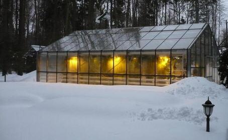 Обработка почвы в теплице зимой