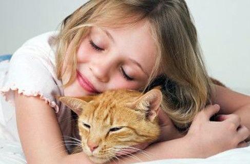 Как выбрать домашнего любимца для своего ребенка?