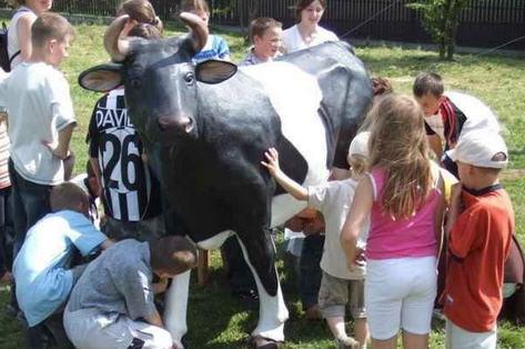 Как выбрать молочную корову
