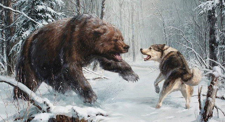 Зимняя охота на медведя
