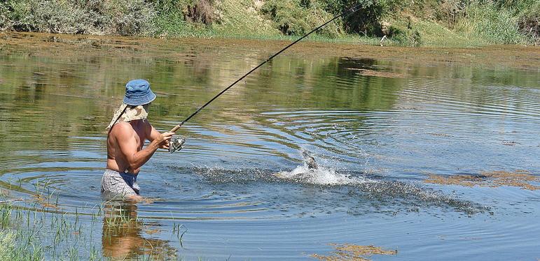 Как вываживать рыбу