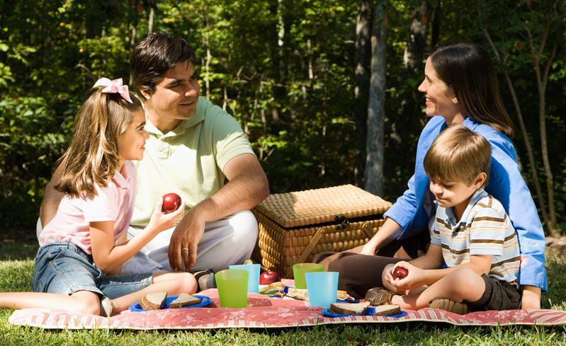 пикник семьей