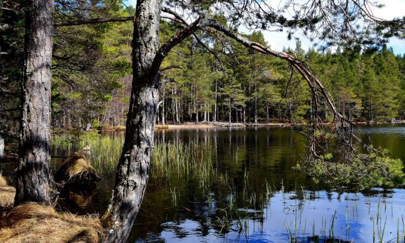 озера финляндии