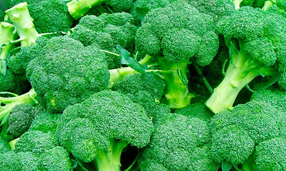 Как вырастить брокколи