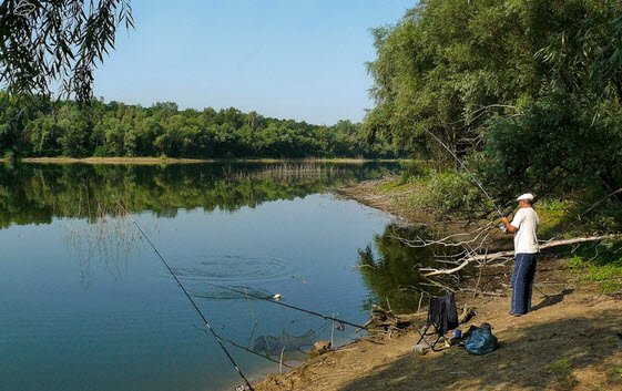 рыболовные места на мсте