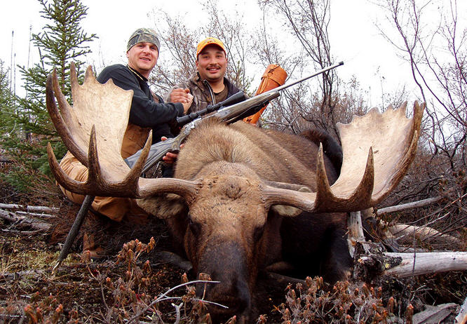 Охота на лося на реву – увлекательное занятие