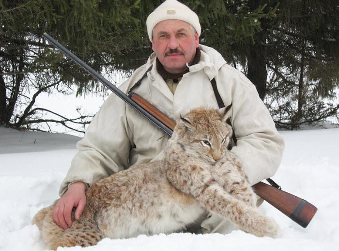 охота на рысь в Кировской области