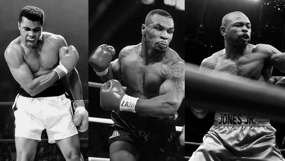 великие боксеры