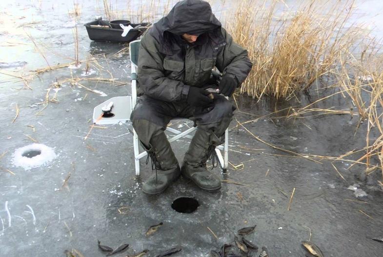 Зимняя ловля серебряного карася и ротана: важнейшие практические аспекты