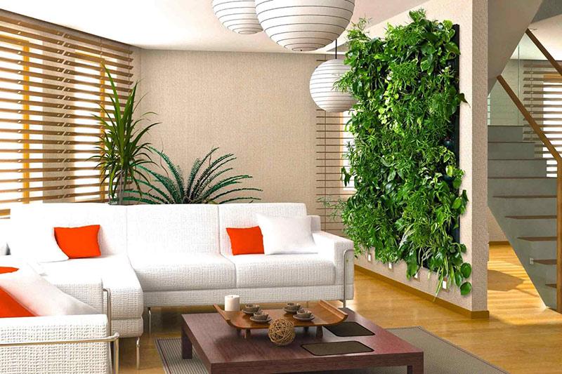 Улучшаем качество жизни с помощью комнатных растений