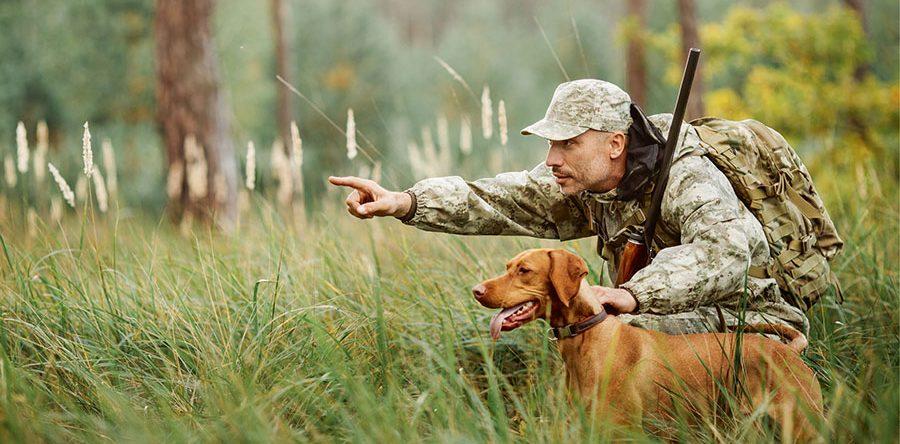 В мире охоты и охотников