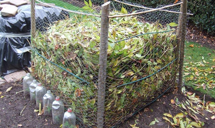 Плюсы и минусы компоста из опавших листьев