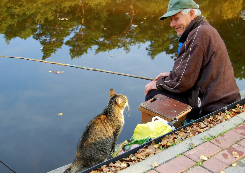 Когда рыба неактивная и поклевка лишь мечта
