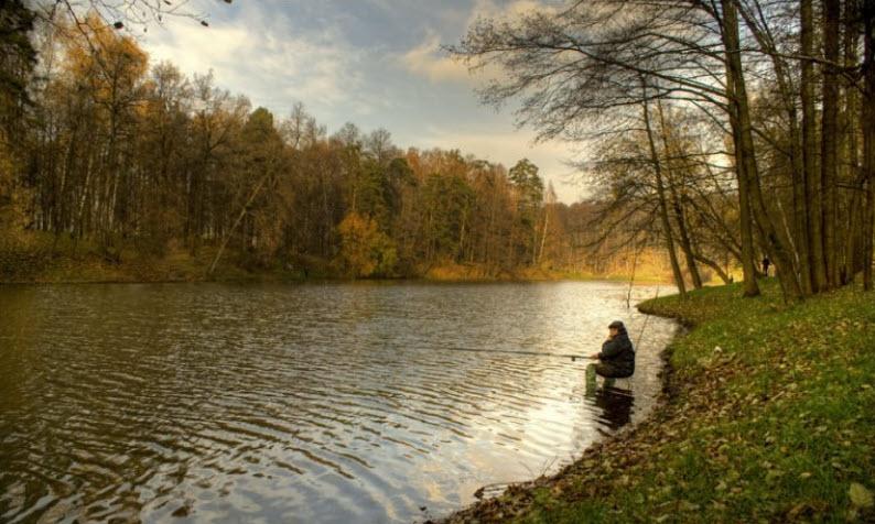 Ловля карпа в сентябре — особенности осенней рыбалки